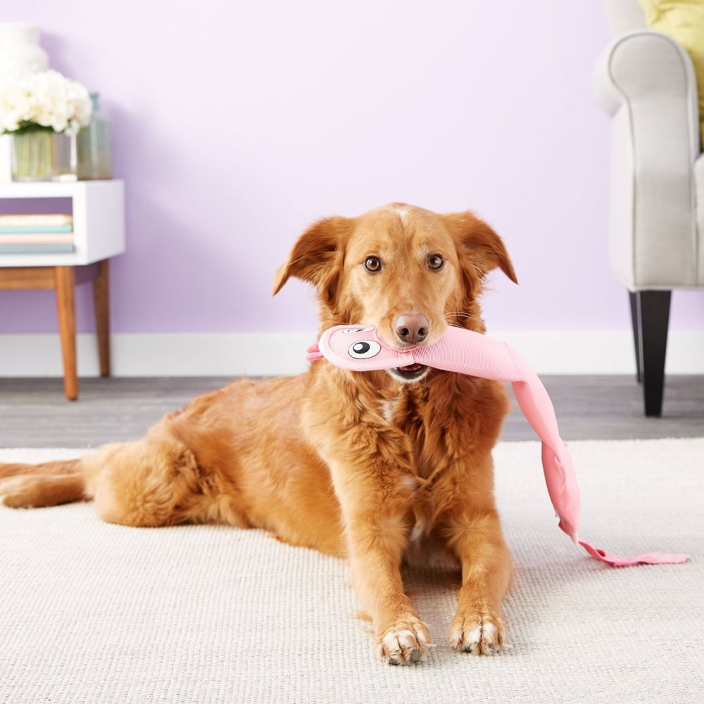 Outward Hound Fire Biterz Flamingo XLarge image