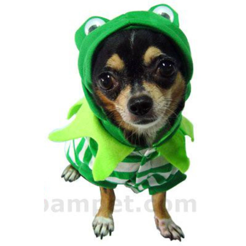 Frog Dog Costume image