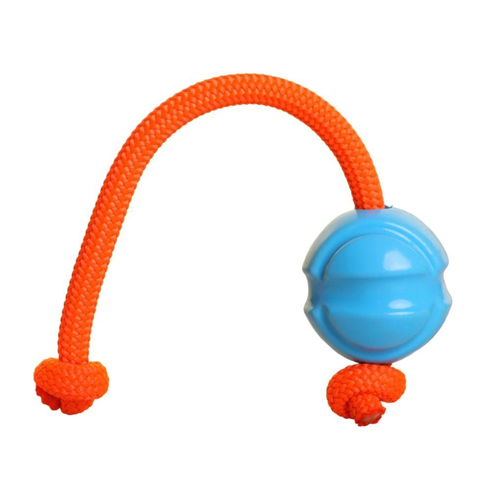 DOOG Fetch-ables Fetch-n-Tug Rope and Ball Blue Dog Toy image