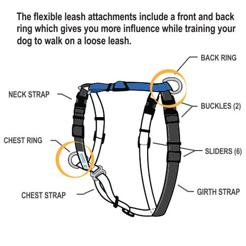 Blue-9 Balance Harness fitting instructions