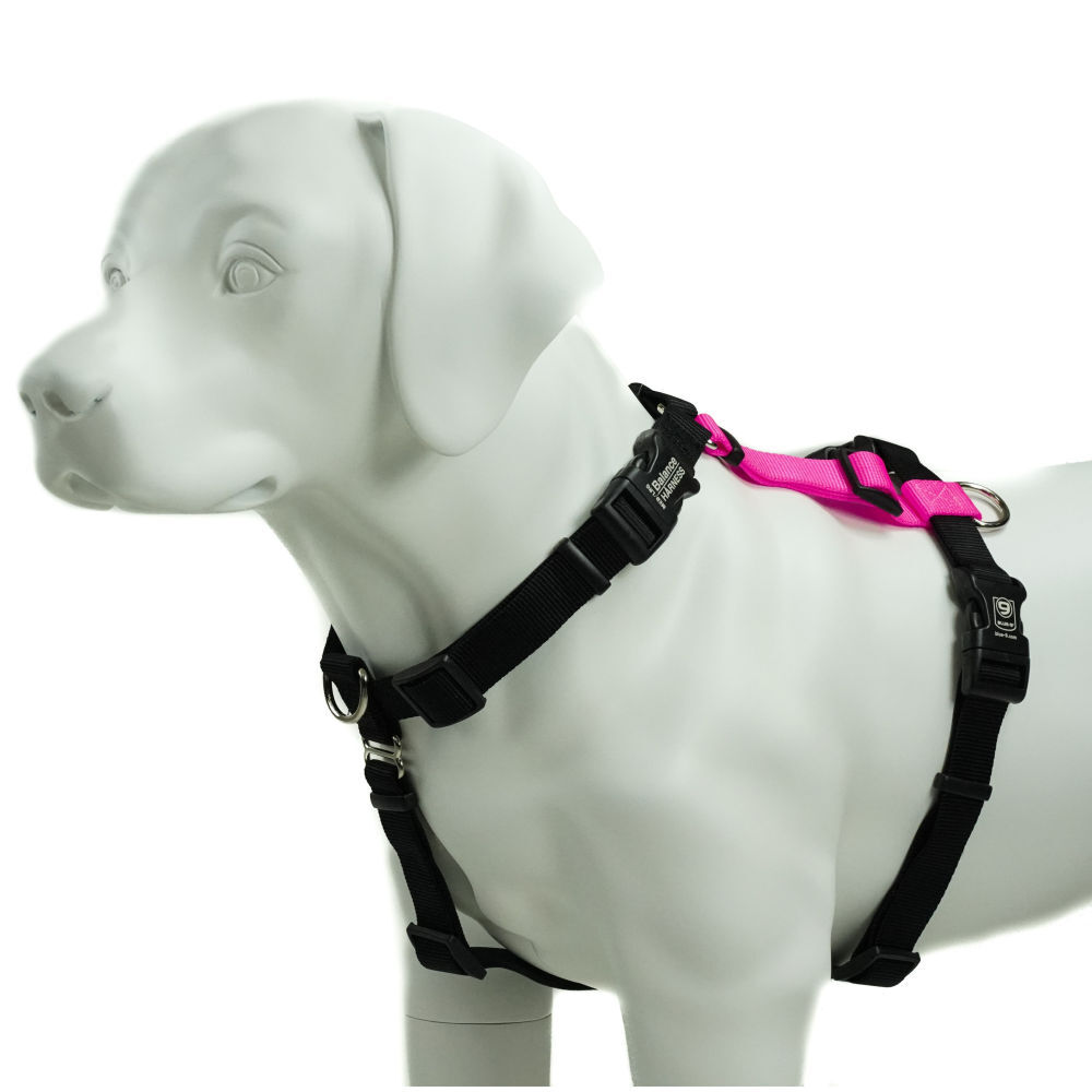 Blue-9 Balance Harness Buckle Neck Hot Pink