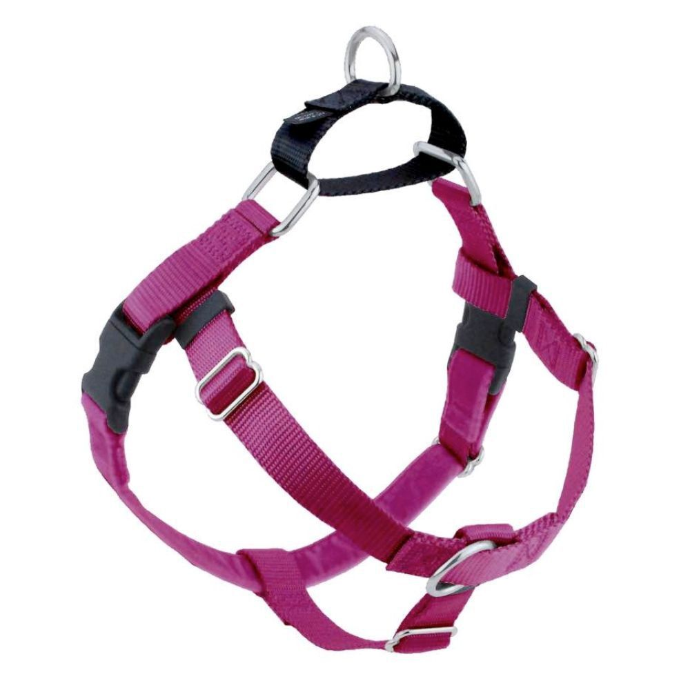 Freedom No Pull Harness Raspberry