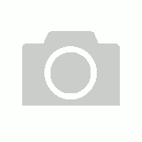 Rogz Classic Collar Fancy Dress, Turquoise Paws Design S, M, L, XL