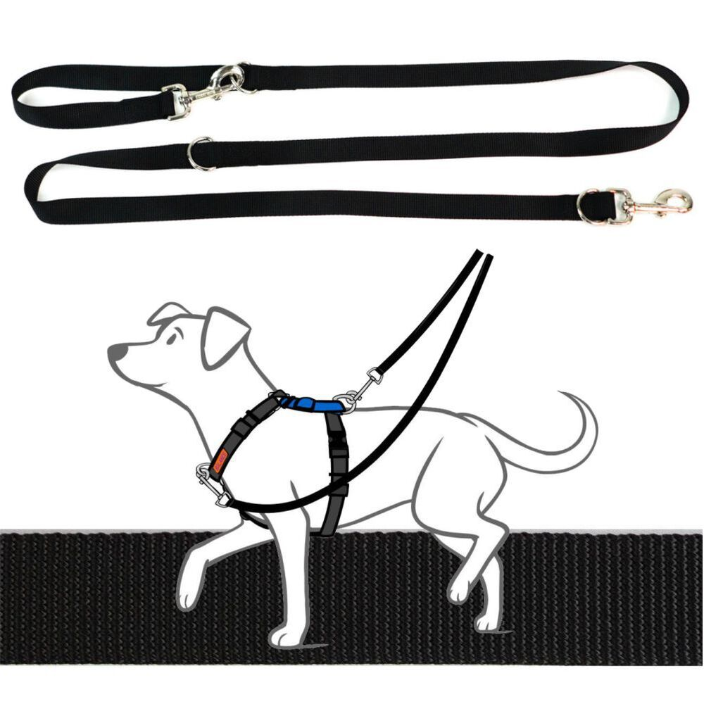Blue-9 Multi-Function Leash Black + Free Tab Leash