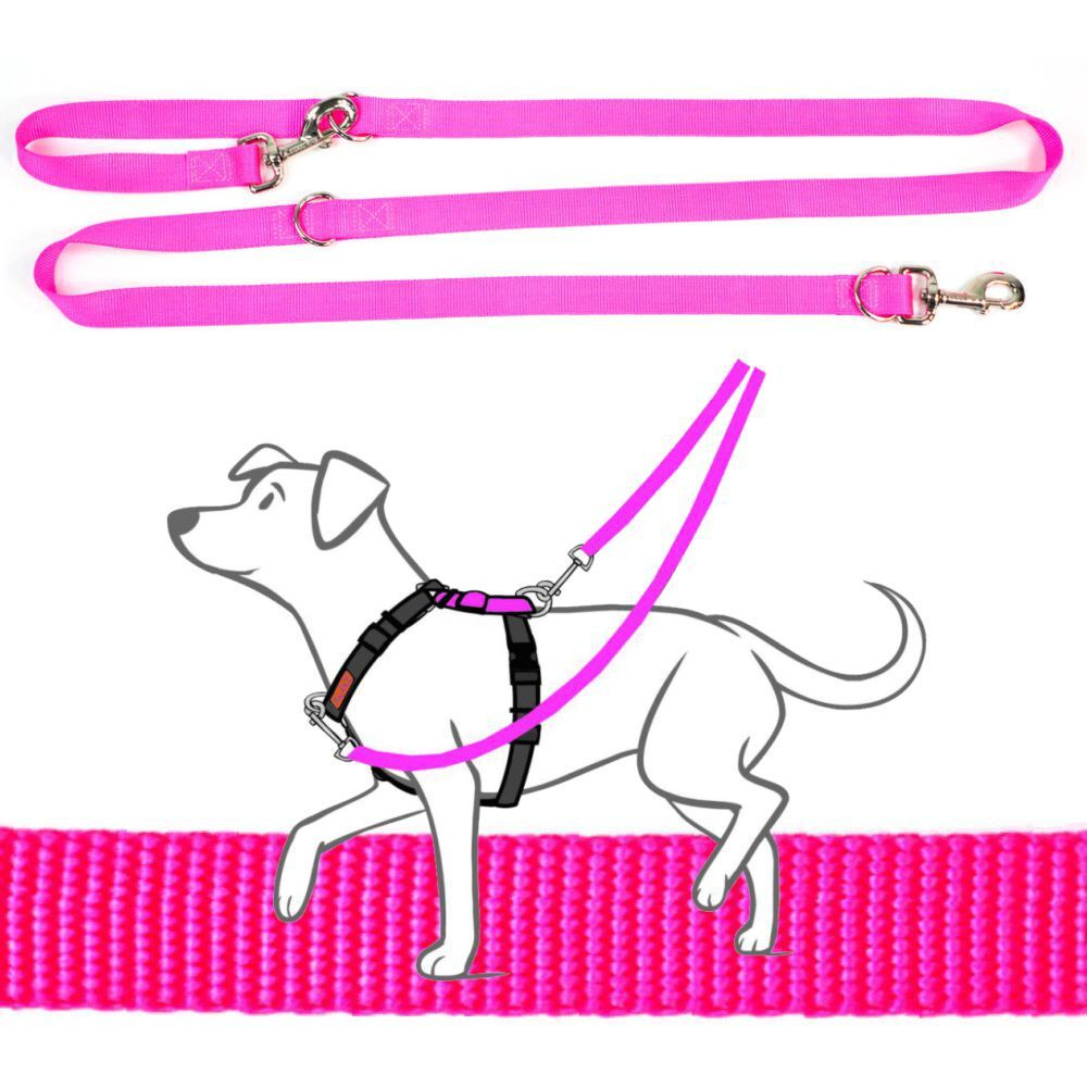 Blue-9 Multi-Function Leash Hot Pink + Free Black Tab Leash
